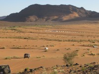 Team Buiding activity in the Moroccan desert