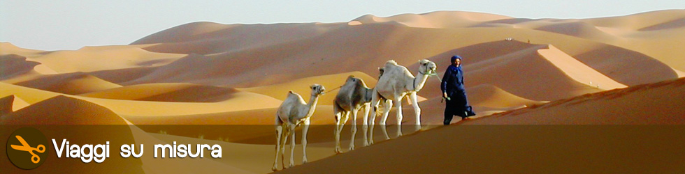 Excursion in the desert of Morocco